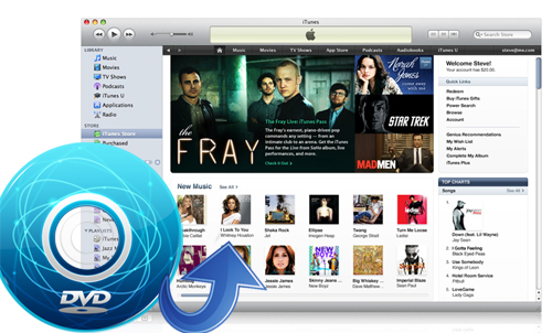 dvd to itunes converter rip dvd to itunes mp4 m4v mov